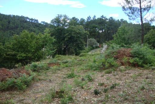 Vente terrain 5765 m2