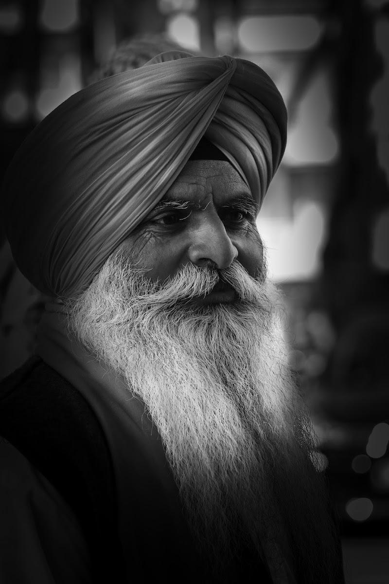 Sikh di alber52