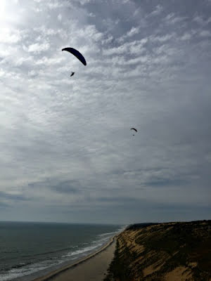 How do I learn to soar paragliders?