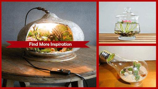1000+ DIY Terrarium Miniature Ideas 4.1 screenshots 4