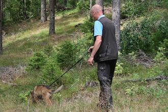 Foto: Bizette får ett litet valpspår