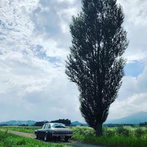 スカイライン  GC110  ケンメリGT- X 50年式のカスタム事例画像 アラーさんの2019年07月29日14:39の投稿