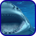 Shark blue sea wallpaper APK