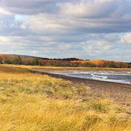 to the tides by Rachel LeBlanc - Landscapes Beaches