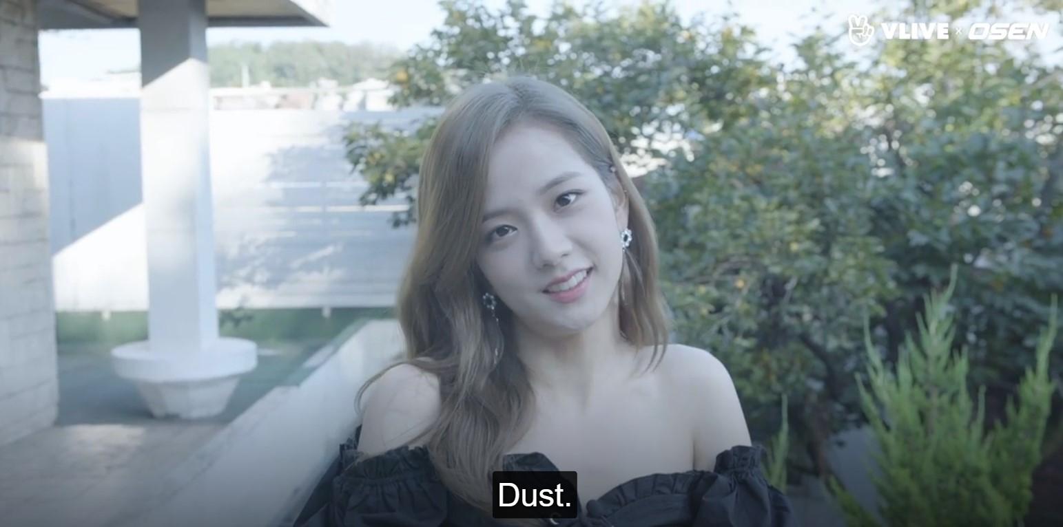 jisoo dust
