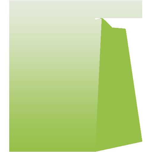 Shopify Logo Green