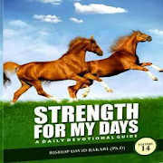 Strength For My Days‏