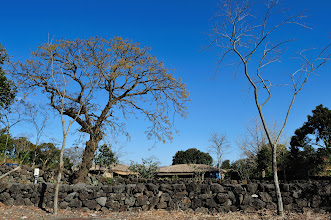 Photo: Looking beyond the wall of Jeongui Hyeon Gaeksa.