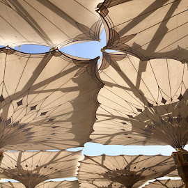 Sunshade  by Shahed Arefeen - Buildings & Architecture Other Exteriors ( architect, umbrellas, other object, architectural )
