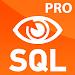 SQL Widget Pro Icon
