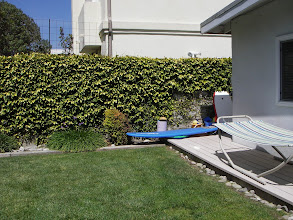 Photo: Back yard, surf boards and boogie boards provided