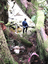 Photo: Dave and Roman descend to the riverside - An Upper Chapman Creek adventure