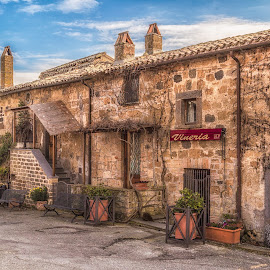 Tuscan Winery by Angela Higgins - City,  Street & Park  Markets & Shops