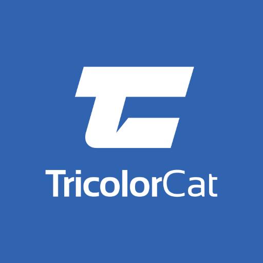 TricolorCat avatar image