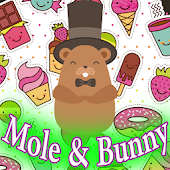 Mole And Bunny Super Match 3