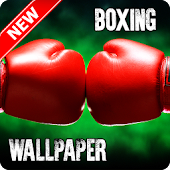 Cool Boxing Wallpaper