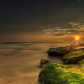 Maravanthe Beach, Udupi by Ketan Vikamsey - Landscapes Waterscapes ( pic of the day, natgeoyourshot, natgeohd, fotorbit, great nature, natgeo, photo of the day, sea scape, bbctravels, water scape, ketan vikamsey, udupi, canon5dmarkiv, canonusa, wonderful places, lonelyplanet, lonelyplanetmagazineindia, worldphotographicforum, canonphotography, maravanthe beach, kv kliks, natgeotravel, travel the world pix, india tourism, incredible india )