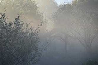 Photo: Sabot sous nuage de lacrymo 30/10