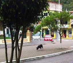 Photo: By Parque Central, Baños.