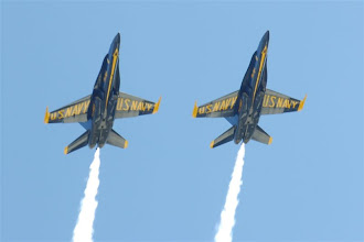 Photo: Most of the time, they flew up above the bay, but a few times, they rocketed directly over us.