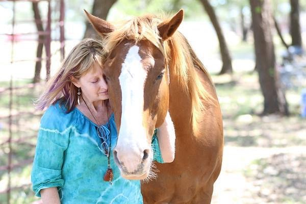 Woman holding a brown horse
