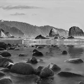 Oregon Beach by Jim Signorelli - Black & White Landscapes ( reflection, sandy beach, black and white beach, rocky beach, meditation, beach,  )