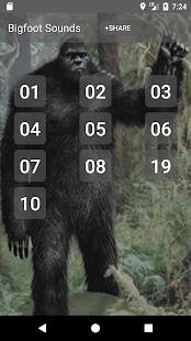 Bigfoot Sounds - náhled