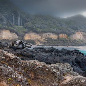 Oregon Coast-.jpg