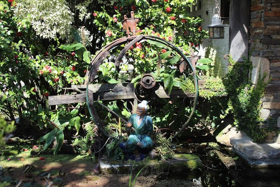 Foto Jardín botánico Fundación Sales 9
