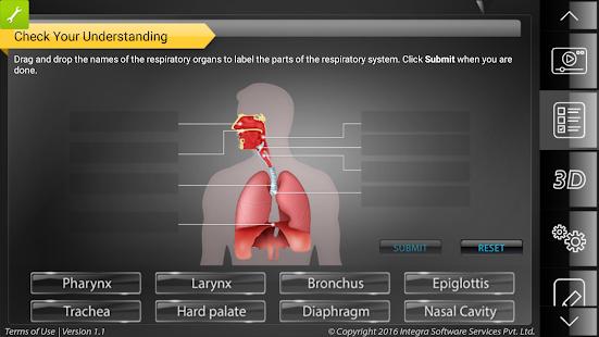 HumanAnatomy-RespiratorySystem - náhled