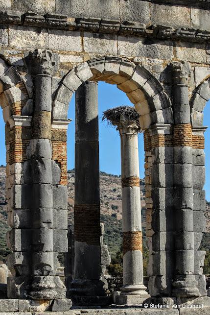 Marokko Romeinse nederzetting Basilica