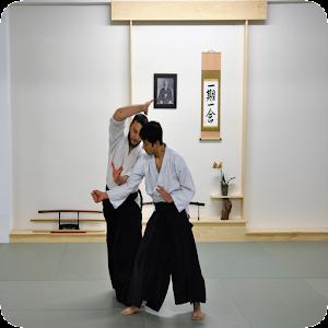 Aikido Sensei for PC