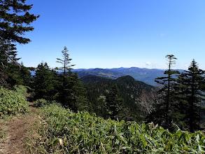 前方に浦倉山(中央左手前)
