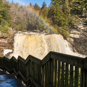 Rainbow Blackwater Falls by Chris Reynolds - Landscapes Waterscapes ( nikon, davis west virginia, color, waterfall, single shot )