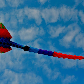 fly high by Andrian Andrew - Novices Only Objects & Still Life ( kite )