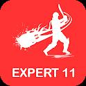 Expert 11 : Make Fantasy Team icon