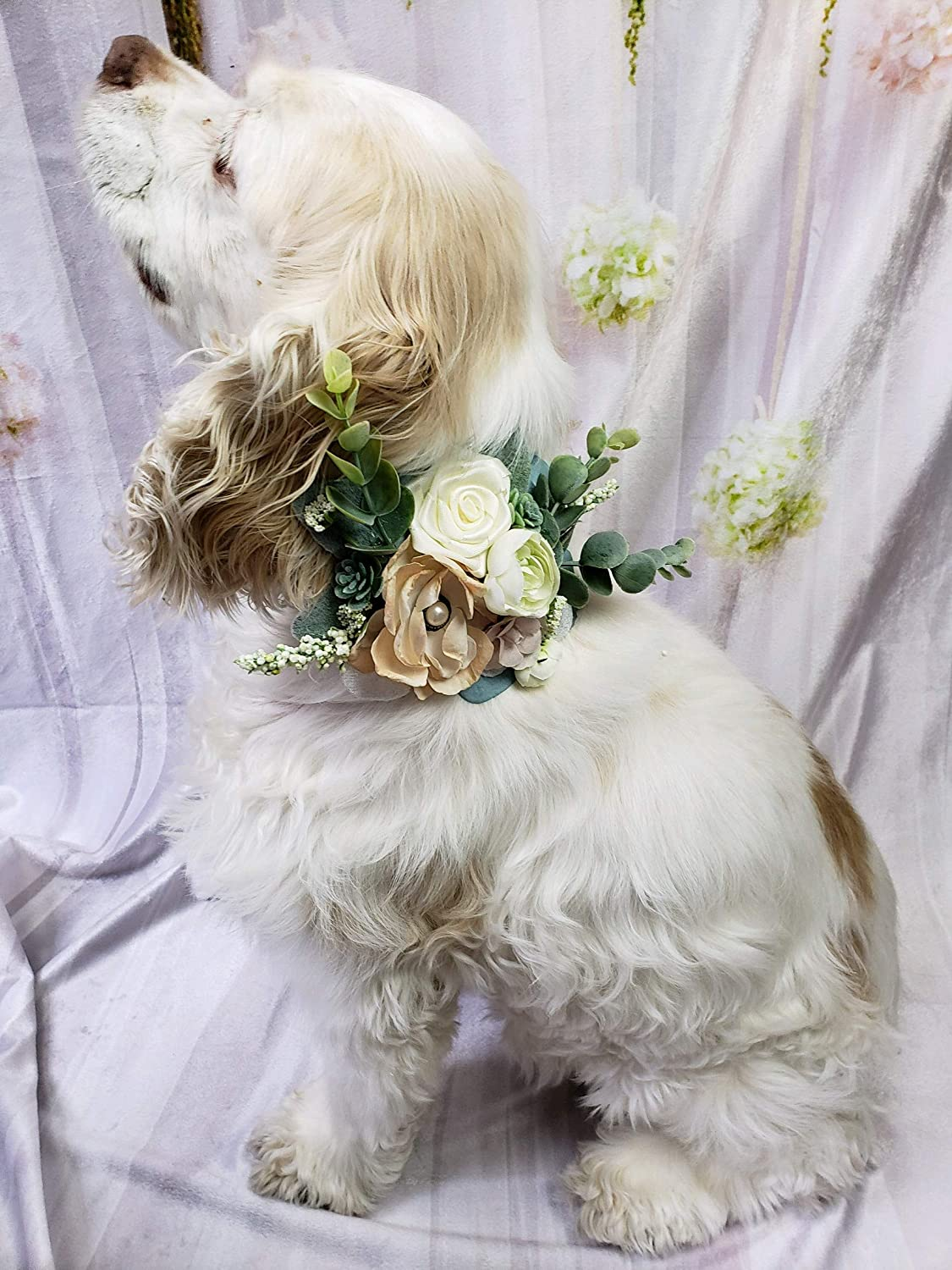 Dog Wedding Accessories dog flower crown