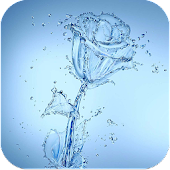 Water Rose HD Live Wallpaper