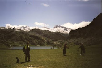 Photo: Nationalpark Picos de Europa