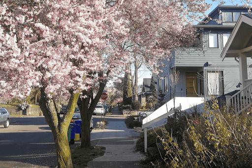 The Best Neighborhoods in Portland