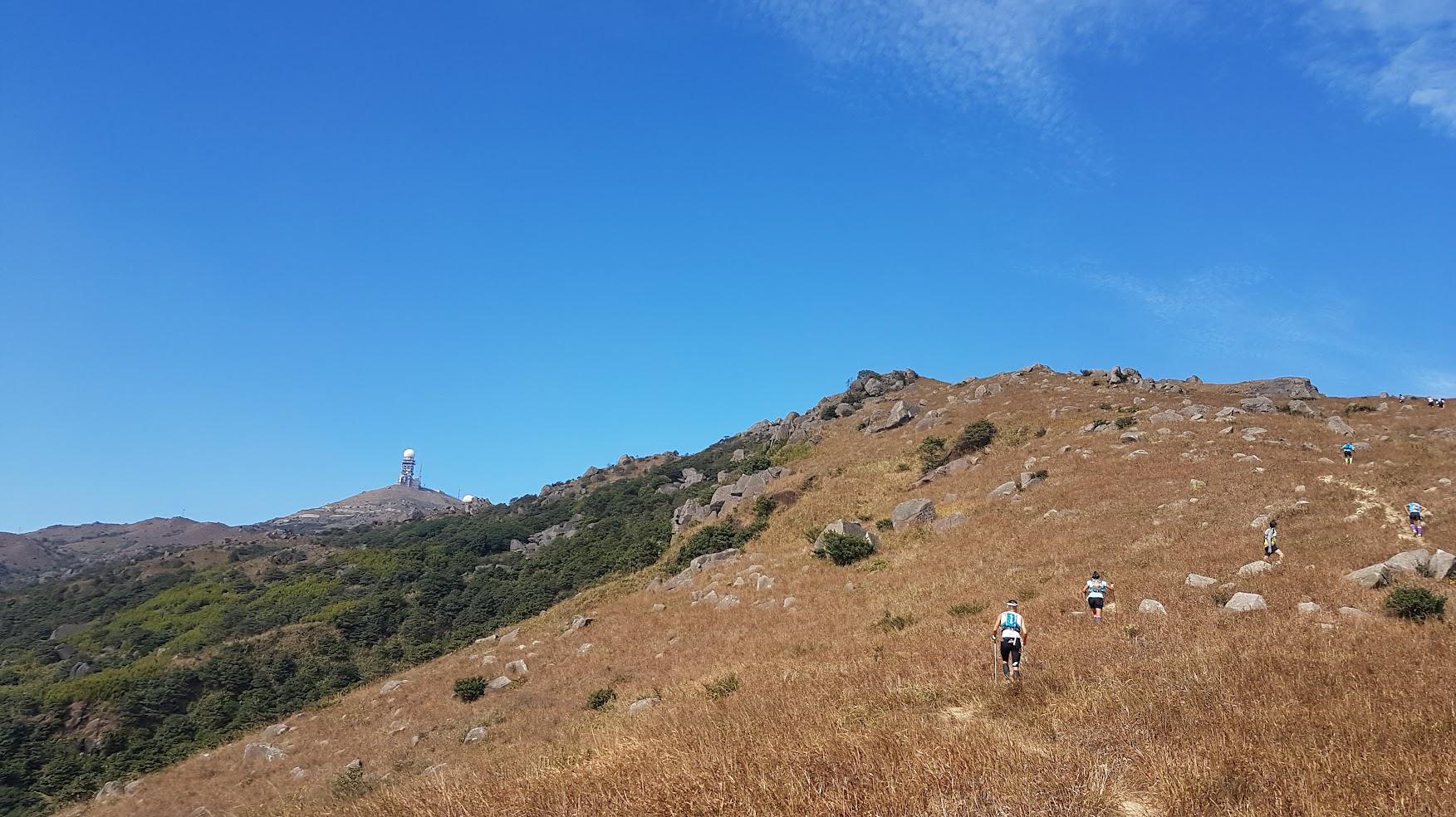 跑手們在曠野中登大帽山