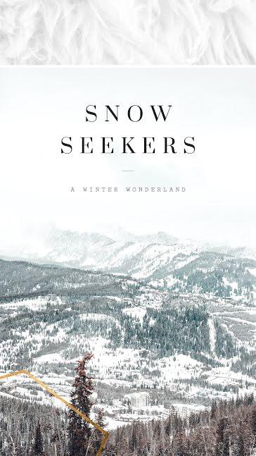 Epic Winter Wonderland - Facebook Story template
