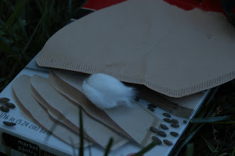 Photo: natural coffee filters as make shift clotting paper to collect blood samples