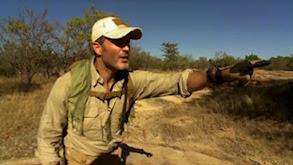 Safari Survival thumbnail