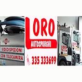 Autospurghi Loro Bologna