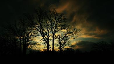 Photo: Morning in Mordor