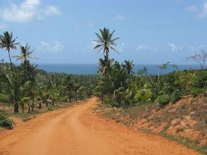 Photo: Zufahrt nach Morrungulo