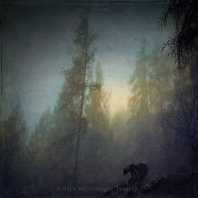 Photo: #manipulation   #moodymondayphoto   #bear   #textureblendphotography   #fog   #forest  Once upon a time... Textures used: https://creativemarket.com/dyrkwyst