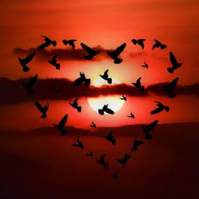 Love is in the sky... by Tatjana Blesic - Digital Art Things