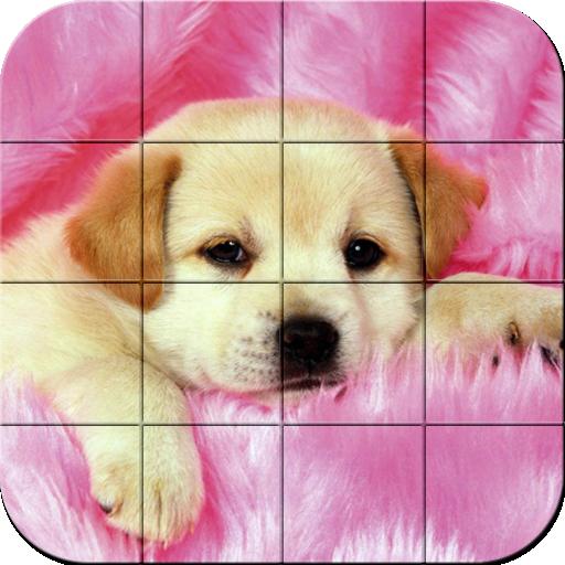 Puzzle - Puppies